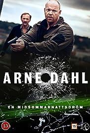 Arne Dahl: En midsommarnattsdröm Poster
