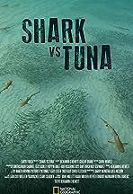 Shark vs Tuna