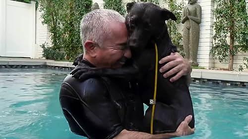 Cesar Millan: Better Human Better Dog: One Brick at a Time