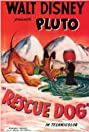 Rescue Dog (1947) Poster