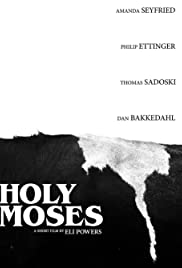 Holy Moses Poster