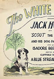 ##SITE## DOWNLOAD The White Outlaw (1925) ONLINE PUTLOCKER FREE
