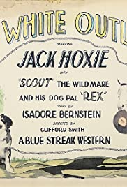 The White Outlaw Poster