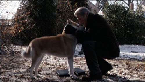 Trailer for this heart warming story about man's best friend