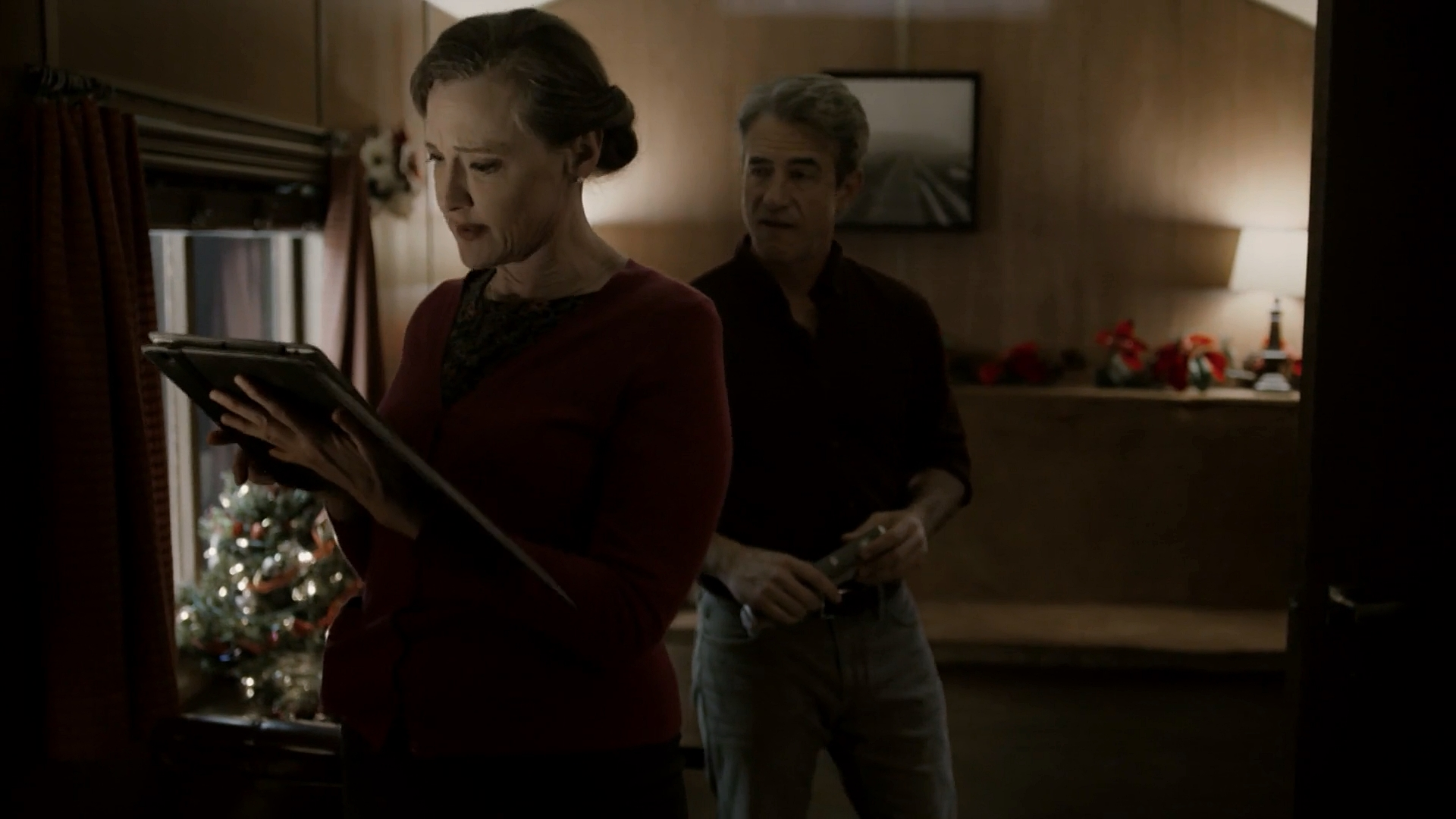 Joan Cusack and Dermot Mulroney in The Christmas Train (2017)