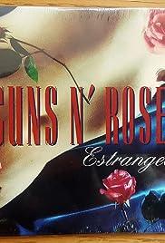 Guns N' Roses: Estranged Poster