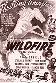 Wildfire Poster