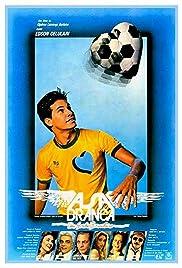 Asa Branca: Um Sonho Brasileiro Poster