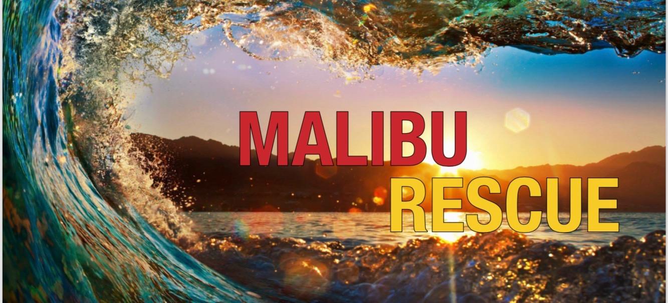 Salvamarii din Malibu - Malibu Rescue (2019) Online Subtitrat in Romana
