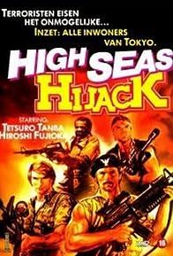 Primary photo for High Seas Hijack