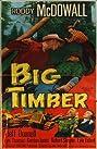 Big Timber (1950) Poster