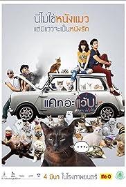 Cat a Wabb Poster