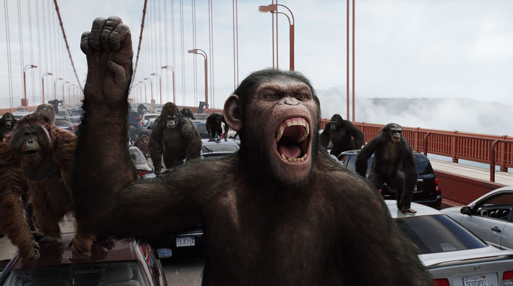 Cuplikan film Rise of the Planet of the Apes (2011).