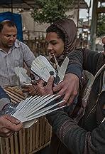 Pigeon Battles of Cairo: Egypt's High-Flying Sport