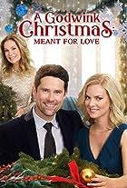 A Godwink Christmas: Meant for Love