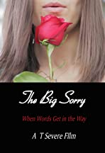 The Big Sorry