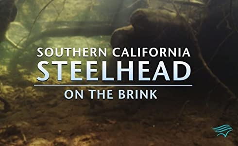 Top 10 movie downloading sites Southern California Steel Head: On the Brink by none [QuadHD]