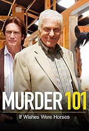 Murder 101 Dick Van Dyke