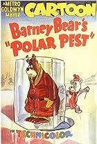 Barney Bear's 'Polar Pest'