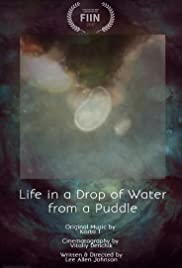 Life in a Drop of Water from a Puddle Poster