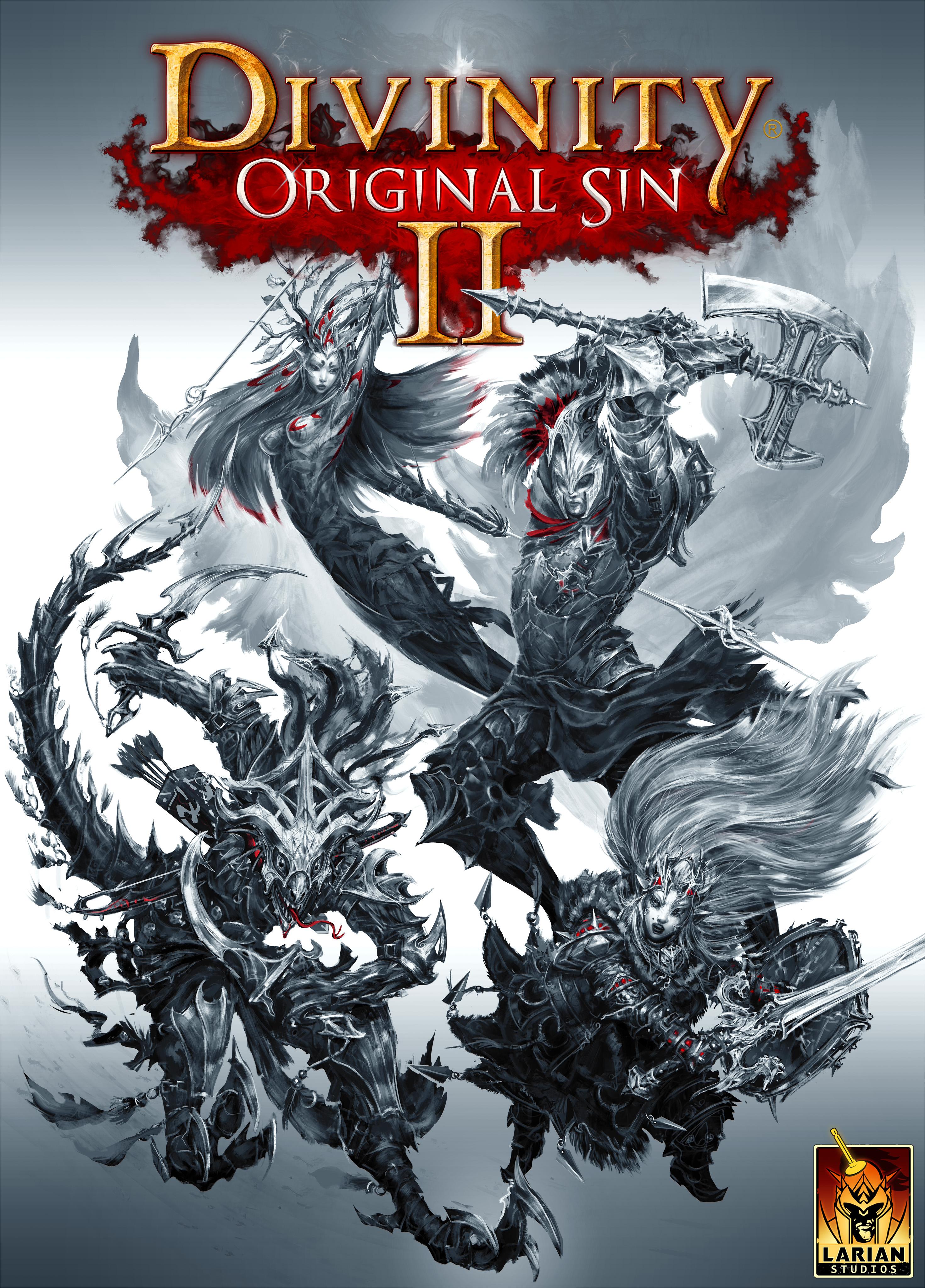 Divinity: Original Sin II (Video Game 2017) - IMDb