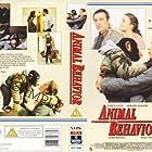 Animal Behavior (1989)