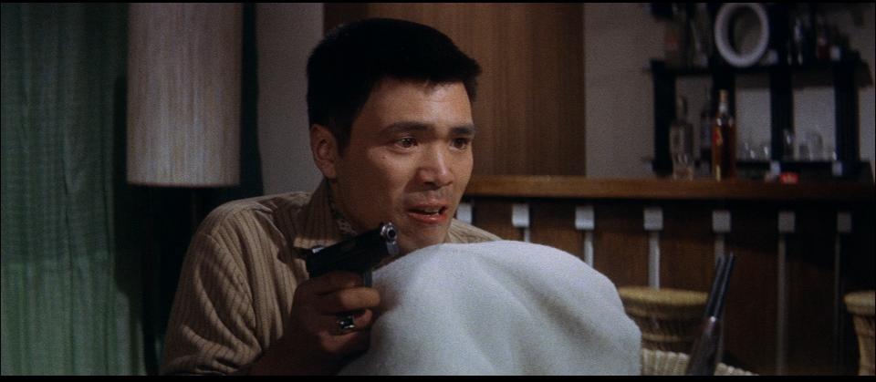 Yajû no seishun (1963)