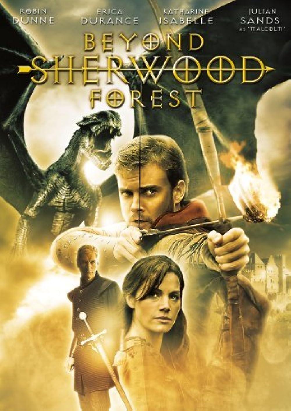 Beyond Sherwood Forest 2009 Hindi ORG Dual Audio 720p BluRay ESub 1.3GB | 334MB Download