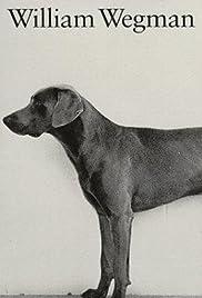 Dog Baseball Poster
