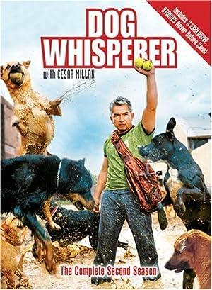 Dog Whisperer with Cesar Millan poster