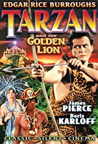 Primary photo for Tarzan and the Golden Lion