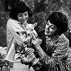 """Gypsy"" Natalie Wood and Rosalind Russell 1962 Warner Bros."