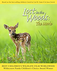 Movie downloads for a psp Lost in the Woods: The Movie USA [mkv]