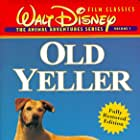 Spike in Old Yeller (1957)