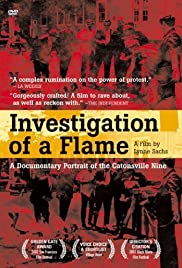 Investigation of a Flame Poster