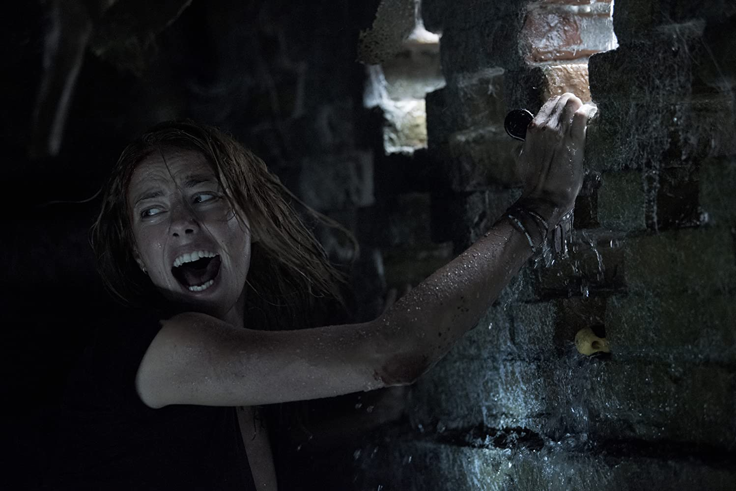 Kaya Scodelario in Crawl (2019)