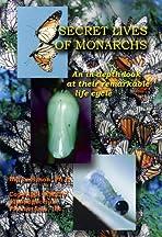 Secret Lives of Monarchs