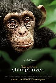 Chimpanzee (2012) 720p