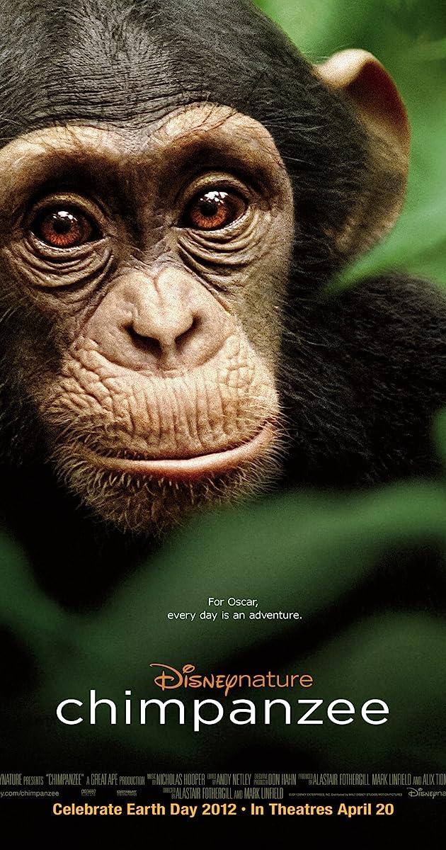 Subtitle of Chimpanzee