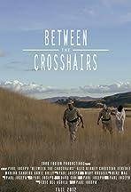 Between the Crosshairs