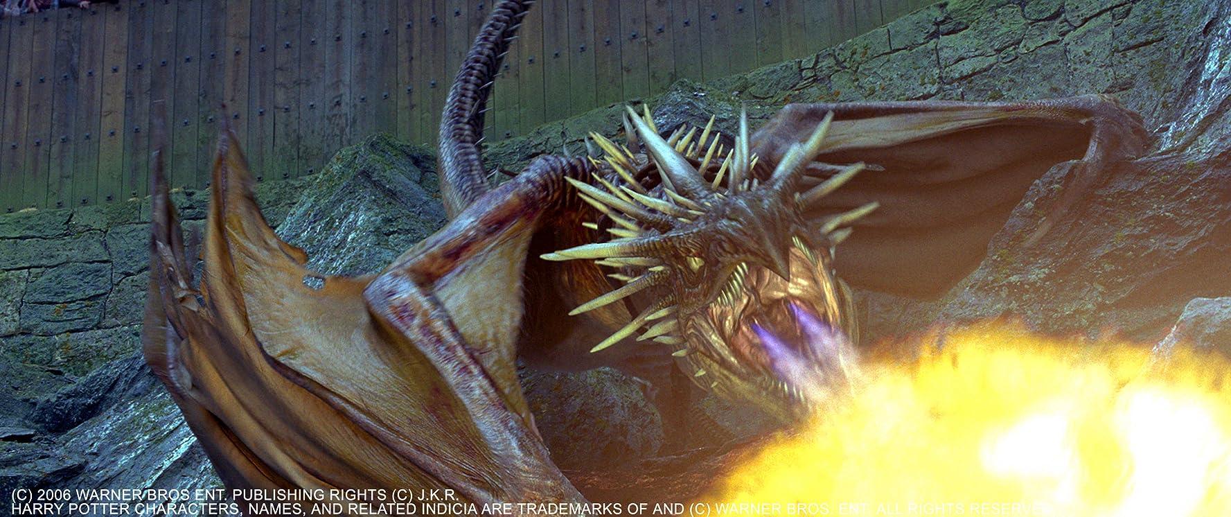 Harry Potter ve Ateş Kadehi Türkçe Dublaj İndir Ekran Görüntüsü 2