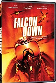 Falcon Down Poster