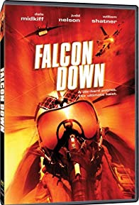 Primary photo for Falcon Down
