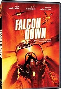 Primary photo for Falcon Down