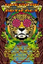American Artifact: The Rise of American Rock Poster Art (2009) Poster