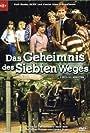 De zevensprong (1982)