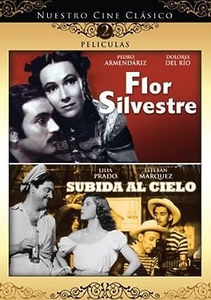 Where to stream Flor silvestre