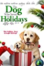 The Dog Who Saved the Holidays (2012) Poster