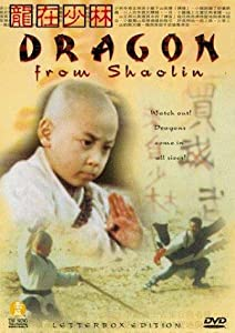 Dragon from Shaolin tamil dubbed movie download
