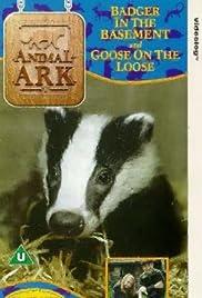 Animal Ark Poster